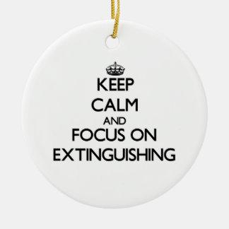 Guarde la calma y el foco en la EXTINCIÓN Adorno De Reyes