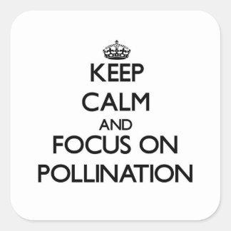 Guarde la calma y el foco en la polinización