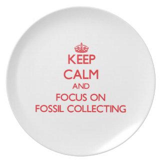 Guarde la calma y el foco en la recogida fósil platos de comidas