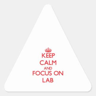 Guarde la calma y el foco en laboratorio pegatinas triangulo