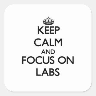 Guarde la calma y el foco en laboratorios calcomanias cuadradas
