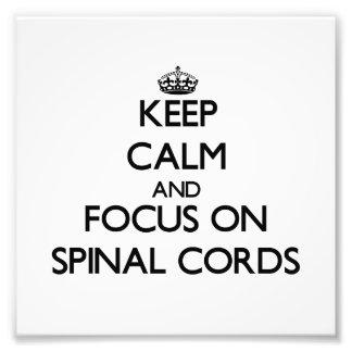 Guarde la calma y el foco en las médulas espinales