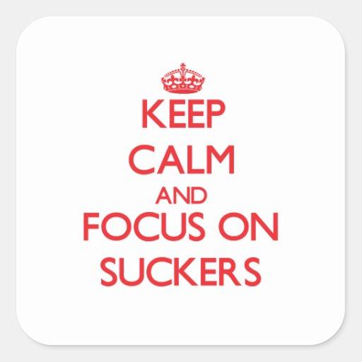 Guarde la calma y el foco en lechones pegatinas cuadradases personalizadas