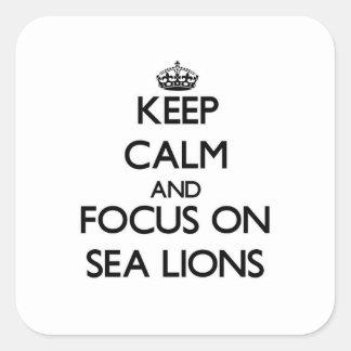 Guarde la calma y el foco en leones marinos pegatina cuadrada