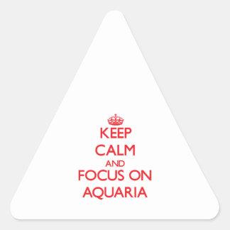 Guarde la calma y el foco en los ACUARIOS Pegatina De Triangulo