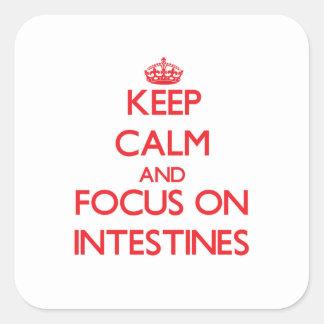 Guarde la calma y el foco en los intestinos pegatina cuadrada