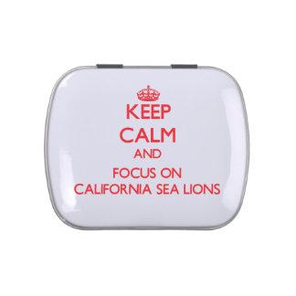 Guarde la calma y el foco en los leones marinos de frascos de caramelos