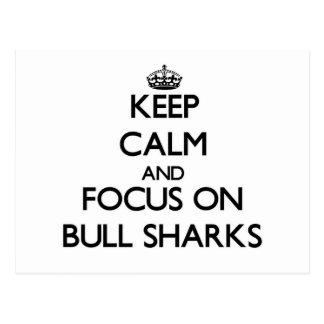 Guarde la calma y el foco en los tiburones de Bull Postal