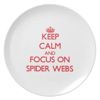 Guarde la calma y el foco en los Web de araña Plato