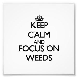 Guarde la calma y el foco en malas hierbas