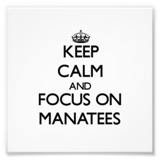 Guarde la calma y el foco en Manatees Arte Con Fotos
