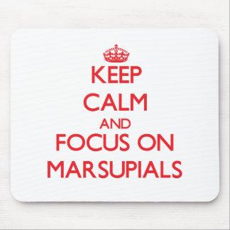 Guarde la calma y el foco en marsupiales