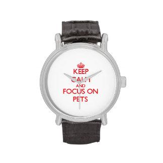 Guarde la calma y el foco en mascotas relojes
