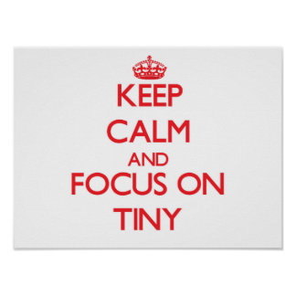 Guarde la calma y el foco en minúsculo póster