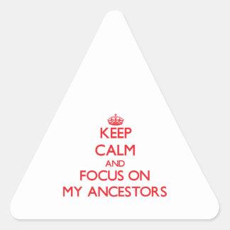 Guarde la calma y el foco en MIS ANTEPASADOS Calcomania Triangulo
