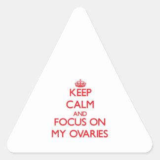 Guarde la calma y el foco en mis ovarios pegatinas triangulo personalizadas