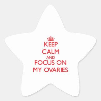 Guarde la calma y el foco en mis ovarios pegatinas forma de estrellaes personalizadas