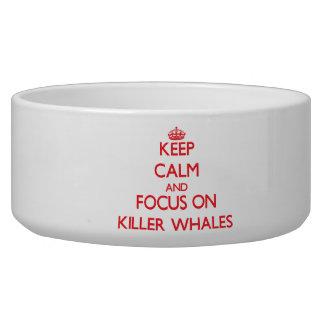 Guarde la calma y el foco en orcas bol para perro