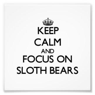 Guarde la calma y el foco en osos de pereza