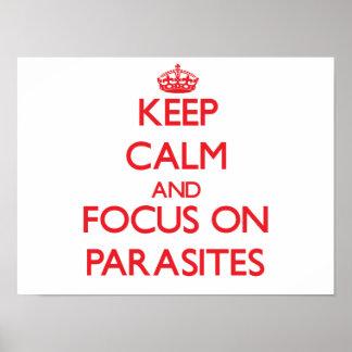 Guarde la calma y el foco en parásitos posters