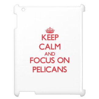 Guarde la calma y el foco en pelícanos