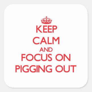 Guarde la calma y el foco en Pigging hacia fuera Pegatina Cuadrada