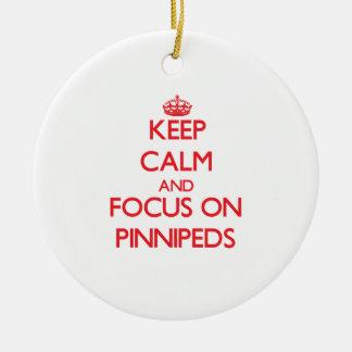 Guarde la calma y el foco en Pinnipeds Ornamente De Reyes