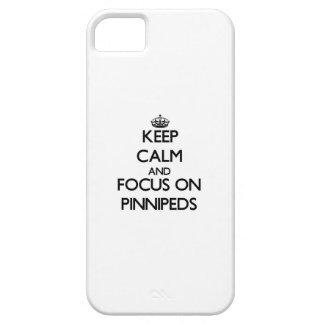 Guarde la calma y el foco en Pinnipeds iPhone 5 Carcasa