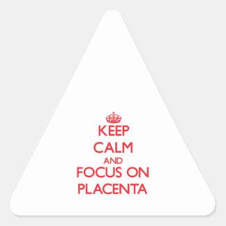 Guarde la calma y el foco en placenta pegatina triangular