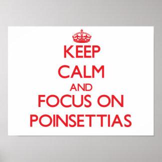 Guarde la calma y el foco en Poinsettias