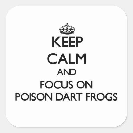 Guarde la calma y el foco en ranas del dardo del pegatinas cuadradases personalizadas