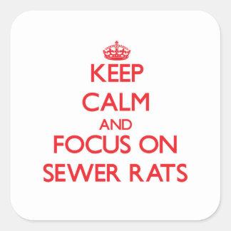 Guarde la calma y el foco en ratas de alcantarilla pegatina cuadrada