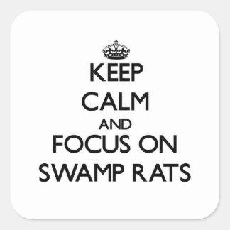 Guarde la calma y el foco en ratas del pantano