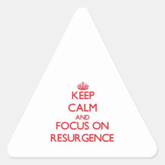 Guarde la calma y el foco en resurgimiento pegatina triangulo personalizadas