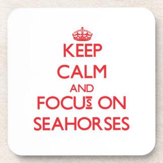 Guarde la calma y el foco en Seahorses