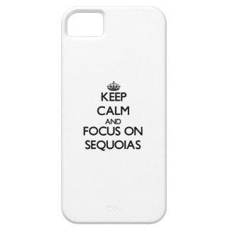 Guarde la calma y el foco en secoyas iPhone 5 fundas