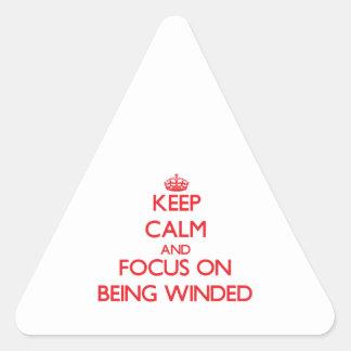 Guarde la calma y el foco en ser venteado pegatina triangular