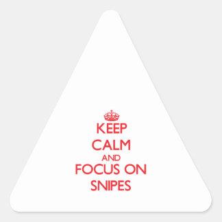 Guarde la calma y el foco en Snipes Pegatina Trianguloada