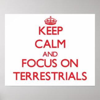 Guarde la calma y el foco en Terrestrials