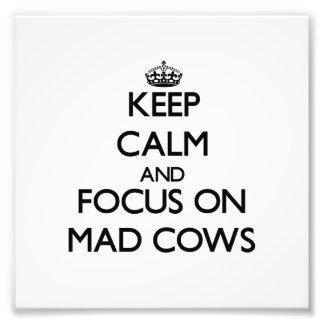 Guarde la calma y el foco en vacas locas cojinete