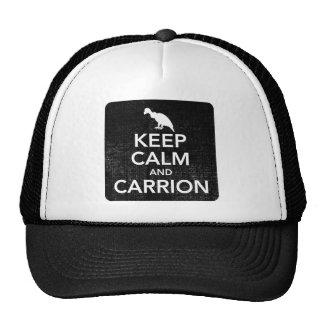 Guarde la calma y el gorra de béisbol del Carrion