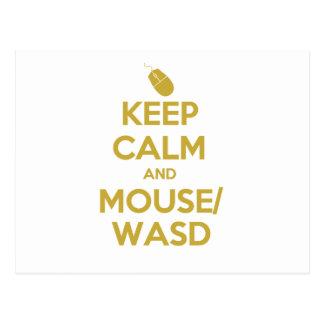 Guarde la calma y el ratón WASD Tarjetas Postales