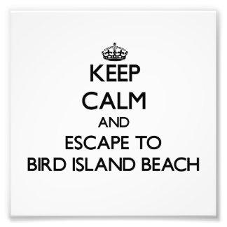 Guarde la calma y escápese a la playa de la isla arte fotografico