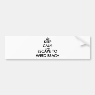 Guarde la calma y escápese para escardar la playa pegatina para coche