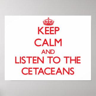Guarde la calma y escuche los cetáceos impresiones