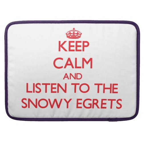 Guarde la calma y escuche los Egrets nevados Funda Para Macbook Pro