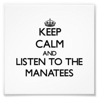 Guarde la calma y escuche los Manatees Impresion Fotografica