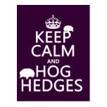 Guarde la calma y Hog los setos (erizos) (todos lo Tarjetas Postales