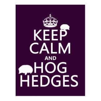 Guarde la calma y Hog los setos (erizos) (todos lo Tarjeta Postal