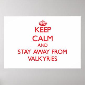 Guarde la calma y permanezca lejos de Valkyries Póster